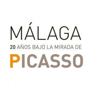 picasso_logo_web